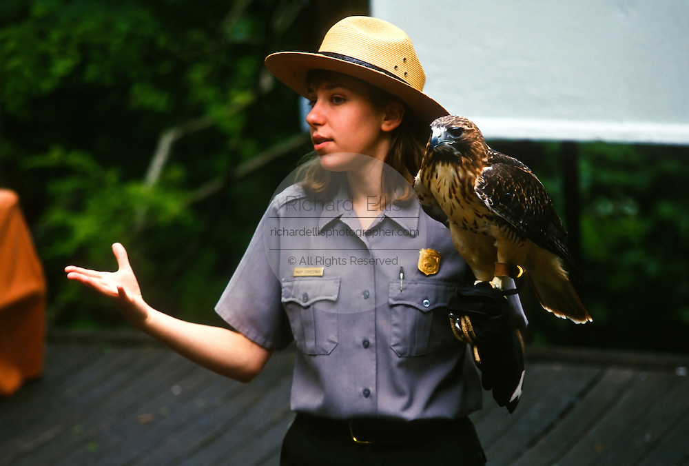 A US National Park Service Ranger demonstrates birds of prey with a hawk in Shenandoah National Park
