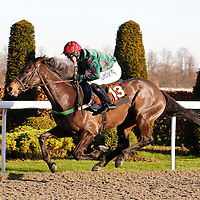 Warden Hill and David Elsworth winning the 1.30 race