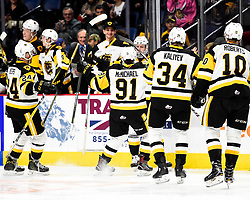 The Hamilton Bulldogs. Photo by Aaron Bell/OHL Images