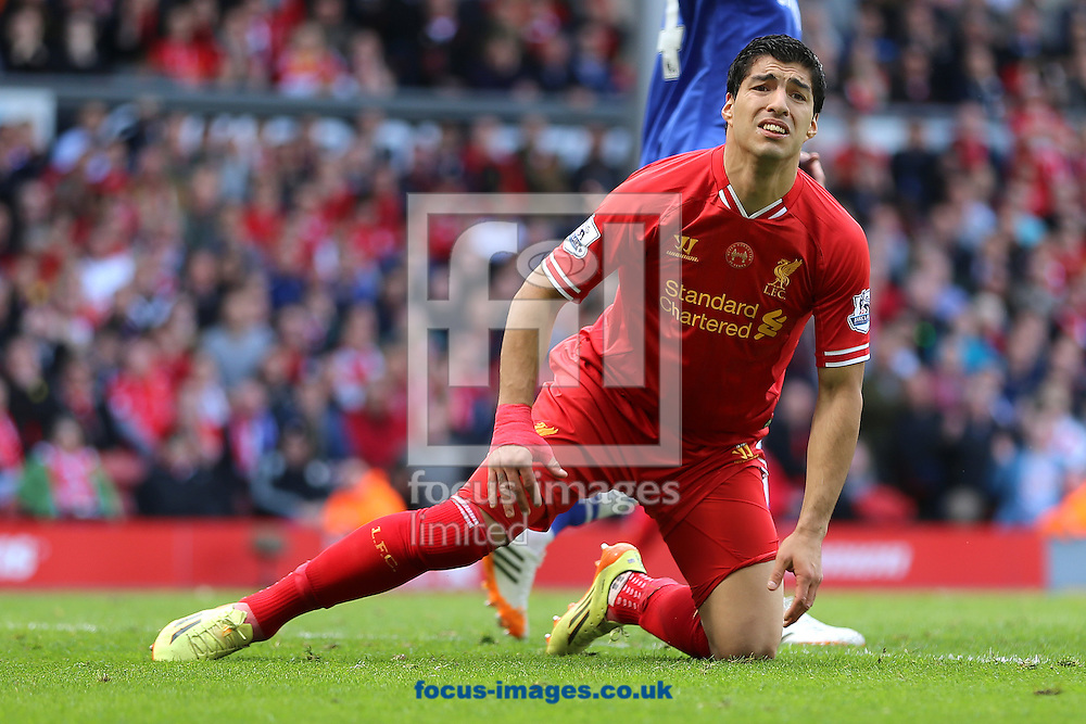 Luis Suarez of Liverpool cannot hide his anguish during 2-0 home defeat to Chelsea in the Barclays Premier League match at Anfield, Liverpool<br /> Picture by Richard Calver/Focus Images Ltd +447792 981244<br /> 27/04/2014