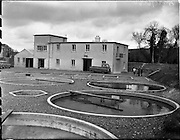 11/03/1959<br /> 03/11/1959<br /> 11 March 1959<br /> Fanure Fish Farm, Roscrea, Co. Tipperary. The farm was set up in the early 1960's to farm trout. Image shows a view of the exterior of the farms main building.