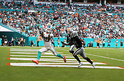 Sep 23, 2018; Miami Gardens, FL, USA; Miami Dolphins wide receiver Kenny Stills (10) hauls in a touchdown pass to tie the game 7-7 in the second quarter at Hard Rock Stadium between the Miami Dolphins and the Oakland Raiders. The Dolphins defeated the Raiders 28-20. (Steve Jacobson/Image of Sport)