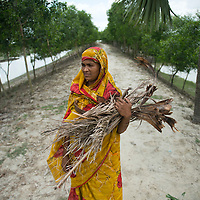 World Bank Photo Dive 2013- Photos <br /> <br /> Climate Change<br /> Embankments