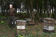 """Bienenzüchter und Arzt Hugo Aguirre erzählt, dass es vor zwei Jahren in der Provinz Santa Fé noch 450.000 Bienenvölker gegeben hat, heute nur noch die Hälfte. Der Hauptgrund für den Tod der Bienen sind die Pestizide, die in Argentinien oft von einer """"Mosquito"""" genannten Maschine ausgebracht werden. In Deutschland starben im vergangenen Jahr teilweise bis zu 30 Prozent der Bienenvölker, europaweit 20 Prozent. Laut Deutschem Imkerbund ist eine Quote von zehn Prozent normal. GREENPEACE fordert für Deutschland das Verbot von sieben Pestiziden, Hersteller sind unter anderem BASF, Bayer und Syngenta."""