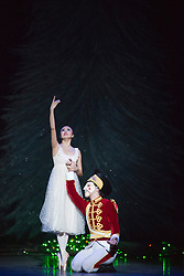 "© Licensed to London News Pictures. 10/12/2013. London, England. Picture: Shiori Kase as Clara and Nathan Young as The Nutcracker. Final working stage rehearsal of ""Nutcracker"" at the London Coliseum. Choreography by Wayne Ealing with music by Pyotr Ilyich Tchaikovsky. Photo credit: Bettina Strenske/LNP"