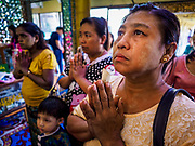 18 NOVEMBER 2017 - YANGON, MYANMAR: A woman prays in a shrine thought to bring material wealth to devotees at Botataung Pagoda in Yangon. Pope Francis is visiting Myanmar, September 27-30. It will be the first visit by a Pope to the overwhelmingly Buddhist nation. He will meet with the Aung San Suu Kyi and other political leaders and will participate in two masses in Yangon. The Pope is expected to talk about Rohingya issue while he is in Myanmar. The Rohingya are persecuted Muslim minority in Rakhine state in western Myanmar. It's not clear how Myanmar's politically powerful nationalist monks will react if the Pope openly talks about the Rohingya. In the past, the monks have led marches and demonstrations against foreign diplomatic missions when foreign ambassadors have spoken in defense of the Rohingya. There is not much visible sign of the Pope's imminent visit in Yangon, which is estimated to be more than 90% Buddhist.    PHOTO BY JACK KURTZ