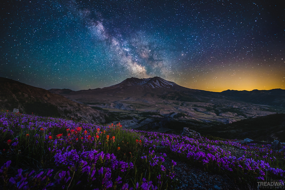 The Milky Way and wildflowers with Mt. St. Helens.