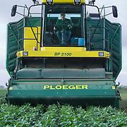 Nederland Giessen 28 augustus 2009 20090828 Foto: David Rozing  ..Serie over levensmiddelensector                                                                                      .Machinale oogst van tuinbonen, de boontjes worden vanuit de oogstmachine overgestort in een container. Deze wordt vervolgens getransporteerd naar de fabriek van HAK, waar de groente dezelfde dag wordt verwerkt. Boer oogst het land met een reusachtige machine .Harvest ..Foto: David Rozing