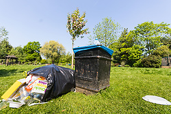Rubbish spills from a bag in Roundwood Park following the hottest May bank holiday weekend on record, park workers have their work cut out creating up the mess left behind by picnickers. London, May 08 2018.