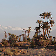 Skoura with Atlas mountains in the distance, Ouarzazate province, Souss-Massa-Draa, Morocco. Skoura is a fertile oasis lined with immense palm groves. Picture by Manuel Cohen