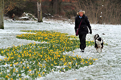 © Licensed to London News Pictures.19/03/2018<br />