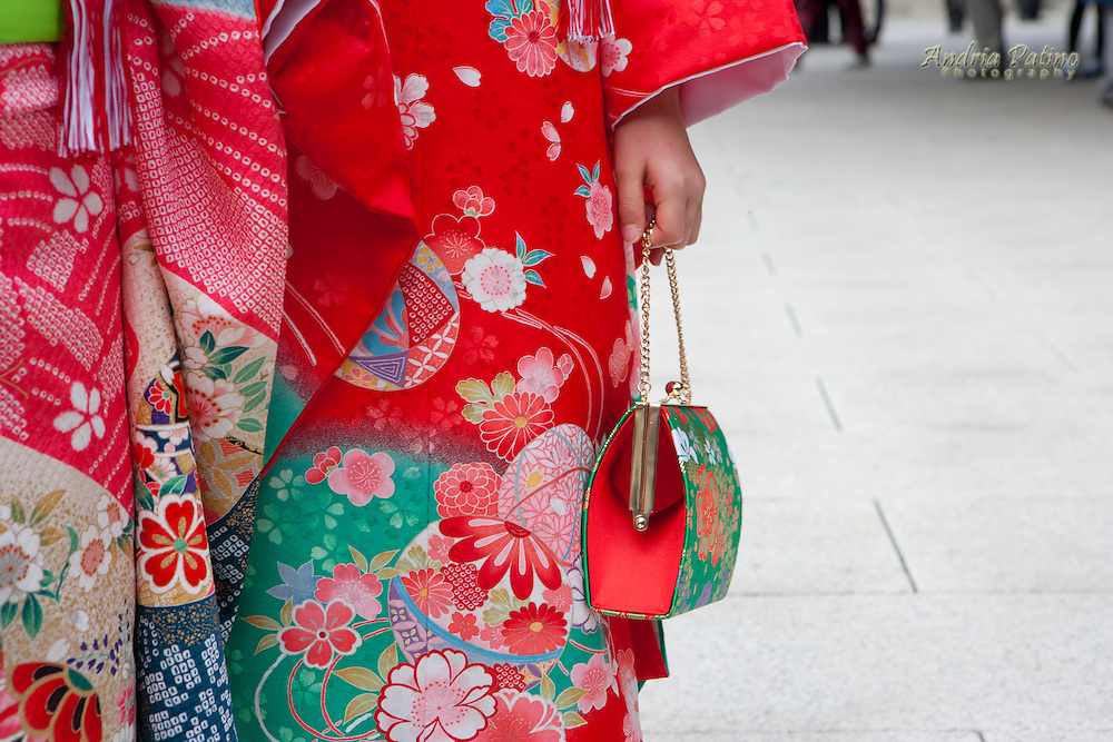 Young girl holding her purse, Children's Day at Meiji Shrine, Tokyo
