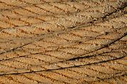 Old marine rope, Alicante, Spain, Europe
