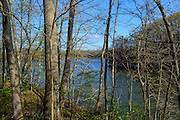 Photo of Caesar Creek Lake viewed through the trees in Caesar Creek State Park, near Waynesville, Ohio, in Warren County.