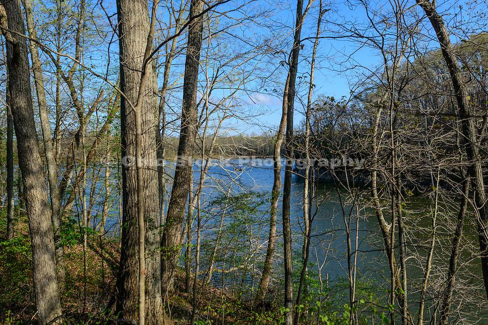 Photo of Caesar Creek Lake viewed through the trees in Caesar Creek State Park, near Waynesville, Ohio, in Warren County.