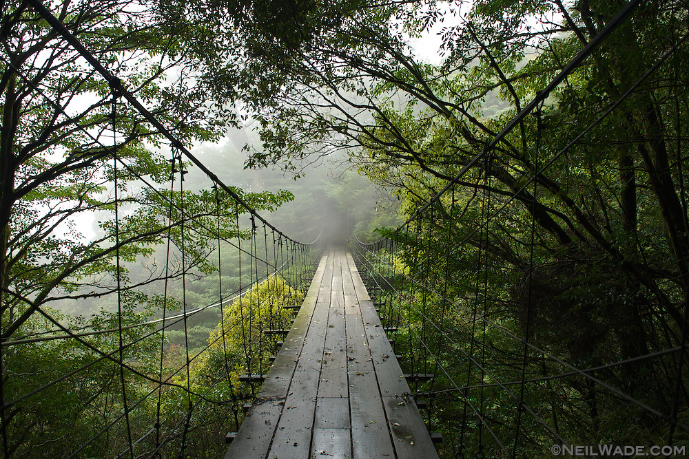 A remote suspension bridge hangs in the fog on central Taiwan's NengGao Hiking Trail.