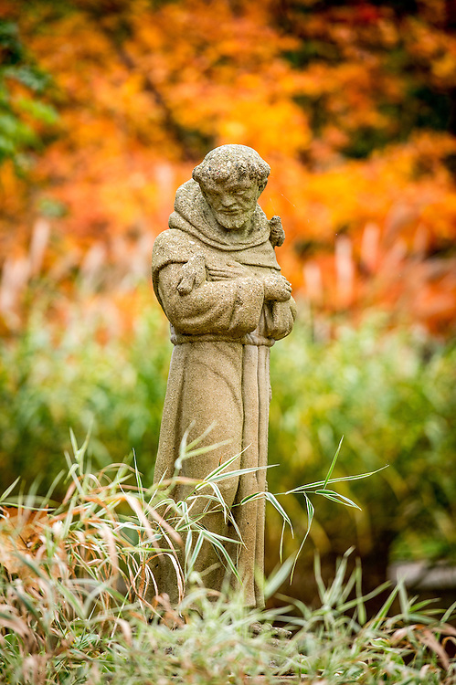 St. Francis Statue, Saint Mary's College (Photo by Matt Cashore)