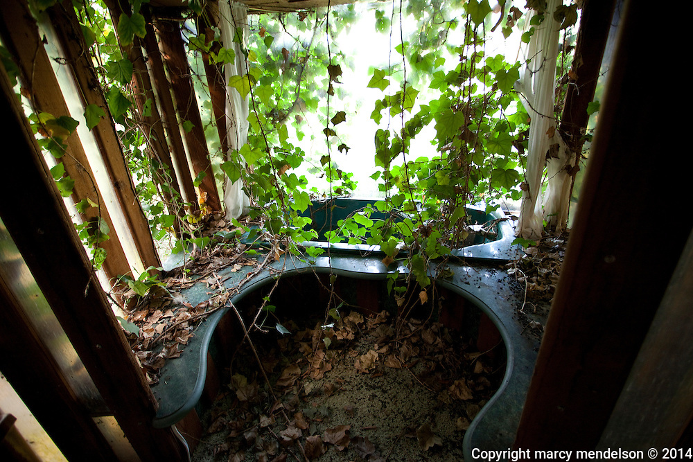 A decadent bathtub that once overlooked the valley is now overtaken by vines.  Many of the original houses of Druid Heights built by Roger Somers are crumbling and in states beyond repair.