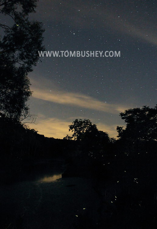 Wantage, New Jersey - Green flashes and streaks from fireflies are visible below a sky filled with stars on the night of June 23, 2012.