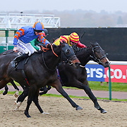Spirit Of The Law and George Chaloner winning the 2.35 race
