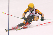 Third overall in the boys slalom individual competition, Eric Baumler of Benzie Central makes his second of two slalom runs at Boyne Highlands Resort in Harbor Springs during the Division 2 State Ski Finals.