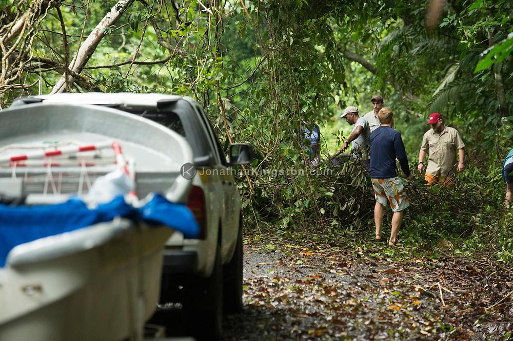 Men clear a road with machete's near Colon, Panama.