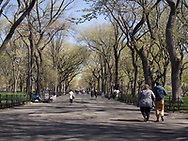The Mall or Literary Walk in Central Park