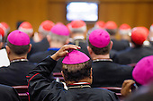 Extraordinary synod on family