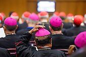 Extraordinary synod on family