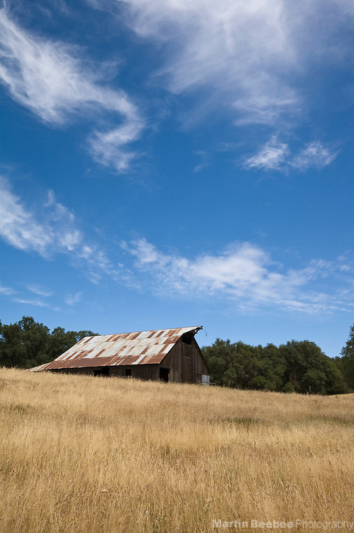 An old barn sits in a field near Jackson, California