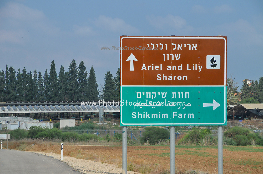 "Havat Shikmim (lit. ""Sycamore Ranch"") is a sheep ranch in Israel that belongs to the family of the late Prime Minister of Israel Ariel Sharon. It is located in the northern Negev Desert, near Sderot. Sharon purchased the ranch in 1972 with the help of a loan from Meshulam Riklis."