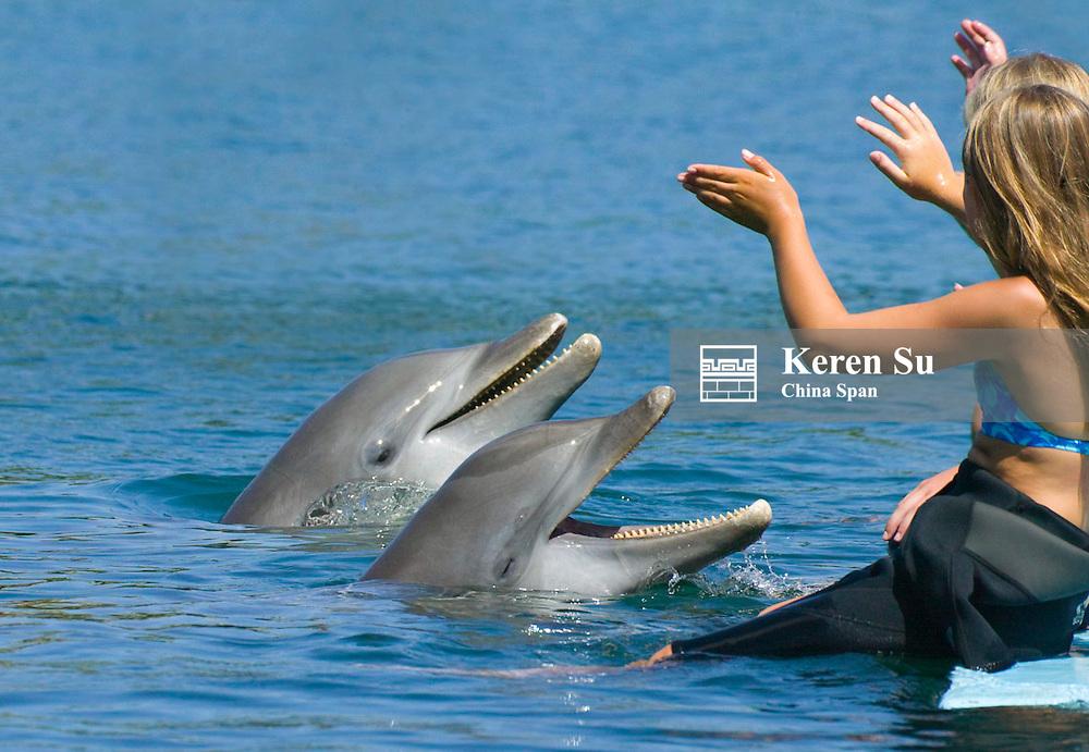 Children interacting with dolphins, Roatan, Bay Islands, Honduras