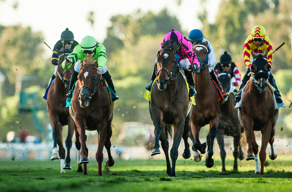 December 26 2014: Alert Bay with Tyler Baze wins the Mathis Brothers Mile at Santa Anita Park in Arcadia CA. Alex Evers/ESW/CSM