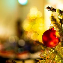 Narnia Christmas Function