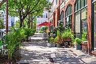 Restaurant, Bronxville, NY
