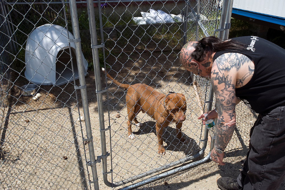 "Rescue Ink, Long Island, New York, taettowierte Motoradgang, Verein zur Rettung mishandelter Hunde und anderer Tierarten..""Batzo"" und Vereinshund Rebel..Rescue Ink rettete dem Pitbull 'Rebel' das Leben, er war in Virginia als Koeder fuer Kampfhunde eingesetzt worden und erlitt schwerste Verletzungen. .Rescue Ink, the animal rescue group that brings an in your face approach to the fight against animal abuse and neglect. The goups members are heavily tattooed and ride motorbikes. Their pitbull 'Rebel', who lives at their headquarters, was rescued from a dog fighting operation, where he was used as bait. He was near death when two members of Rescue Ink flew to Virginia to save him..Foto © Stefan Falke."