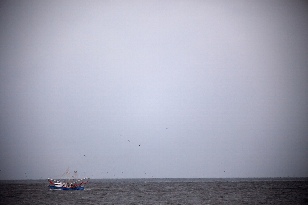 A shrimp boat carrying oil skimmers returns to port in the Gulf on June 23, 2010 near Grand Isle, LA where oil has reached the shore.