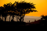 People walk or ride along Ocean View Blvd. in Pacific Grove, CA..Photo Brian Baer