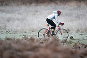 © Licensed to London News Pictures. 26/12/2014. Richmond, UK A frosty start to Boxing Day at Richmond Park in South West London today 26th December 2014. Photo credit : Stephen Simpson/LNP