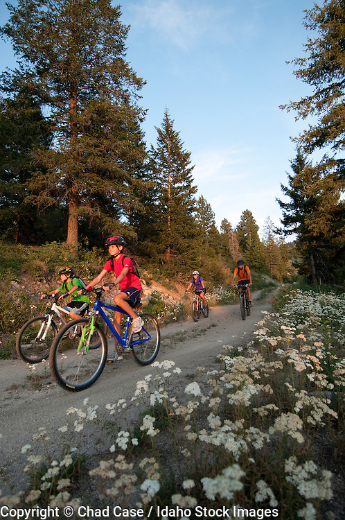 Family riding mountain bikes on trails at Bogus Basin Resort near Boise, Idaho.  Model released.