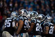 January 3, 2016: Carolina Panthers vs Tampa Bay Buccaneers. Panthers defense huddle