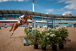Guery Jerome, BEL, Grand Cru vd Rozenberg<br /> Official Training Jumping<br /> FEI European Para Dressage Championships - Goteborg 2017 <br /> © Hippo Foto - Dirk Caremans<br /> 22/08/2017,