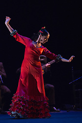 "© Licensed to London News Pictures. 10 March 2014. London, England. Pictured: Belén Maya dancing. ""Trasmín"" performed by the Belén Maya Company during the Flamenco Festival London 2014 at Sadler's Wells Theatre. Photo credit: Bettina Strenske/LNP"