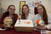 "Amira Mahti, Grainne Ni Bholain and Martina Mannion at the ""undergrad"" Science Fair in NUIG. Photo:Andrew Downes"