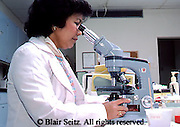 Medical Lab Technicians, Laboratory Tech uses Microscope