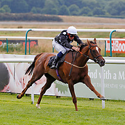 Lingfield 17th July 2013