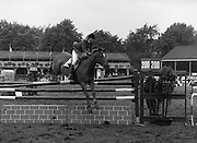 "07/08/1980<br /> 08/07/1980<br /> 07 August 1980<br /> R.D.S. Horse Show: John Player Top Score Competition, Ballsbridge, Dublin. Katie Monahan, (U.S.A.) on ""Inside Edge""."