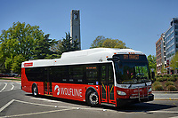 New Wolfline bus on Hillsborough Street in front of the Memorial Belltower.