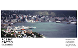 A panoramic view of Wellington City and the harbour, from the summit of Mt Victoria.<br />