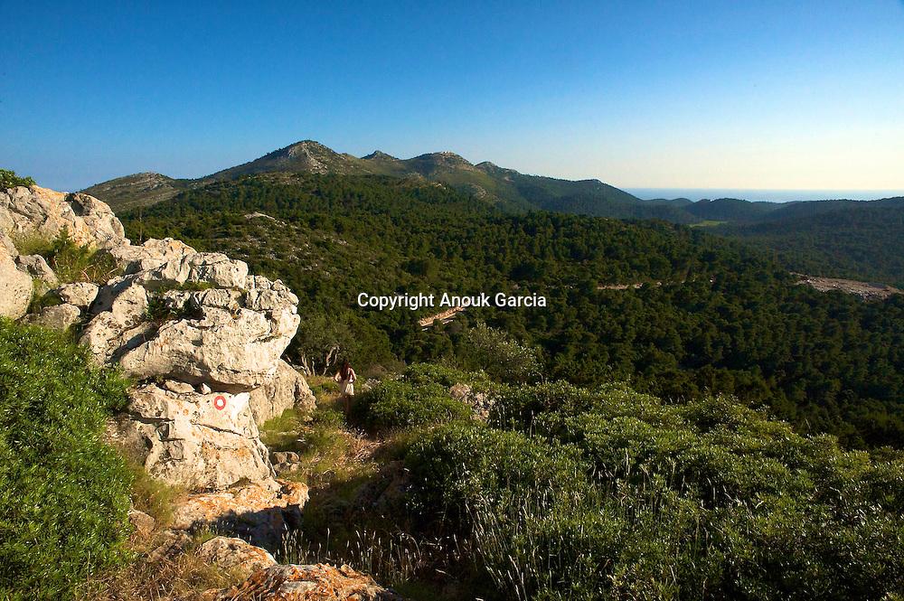 Che?nes vert et pin d'alep recouvrent l'i?le. L'une des plus verdoyante de l'Adriatique.